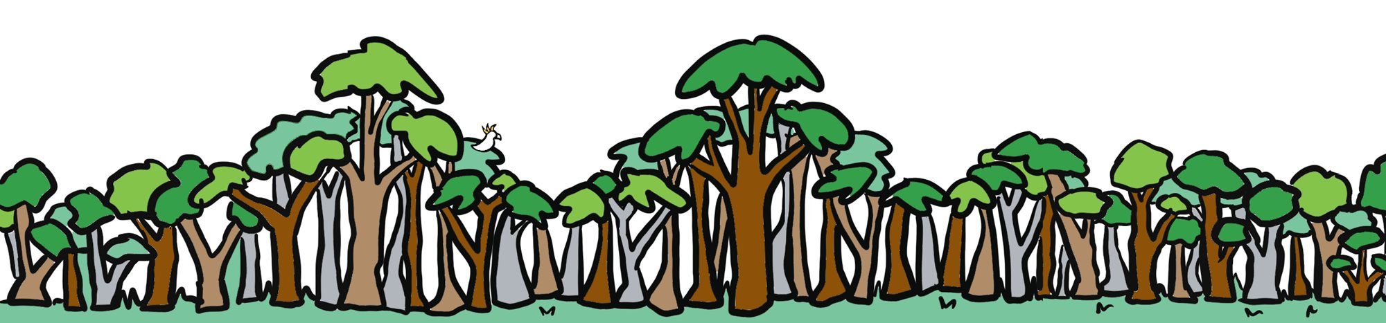 Colour comic banner of forest