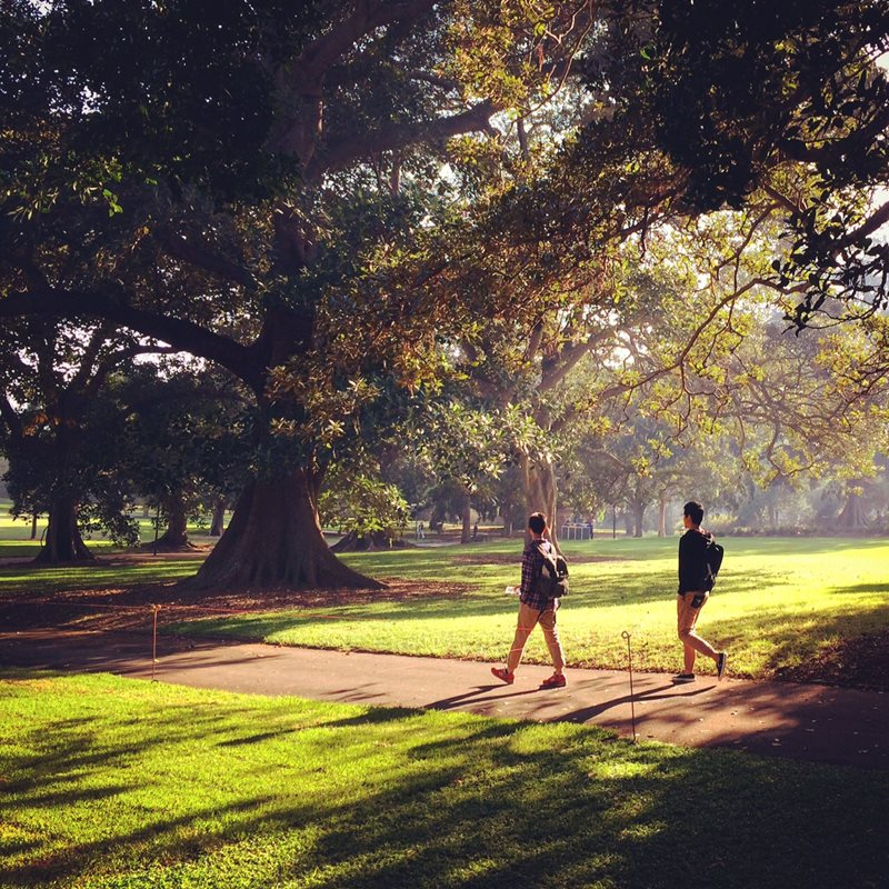 visitors walking in the domain