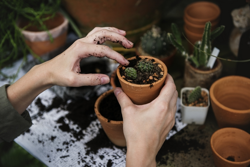 Potting plants