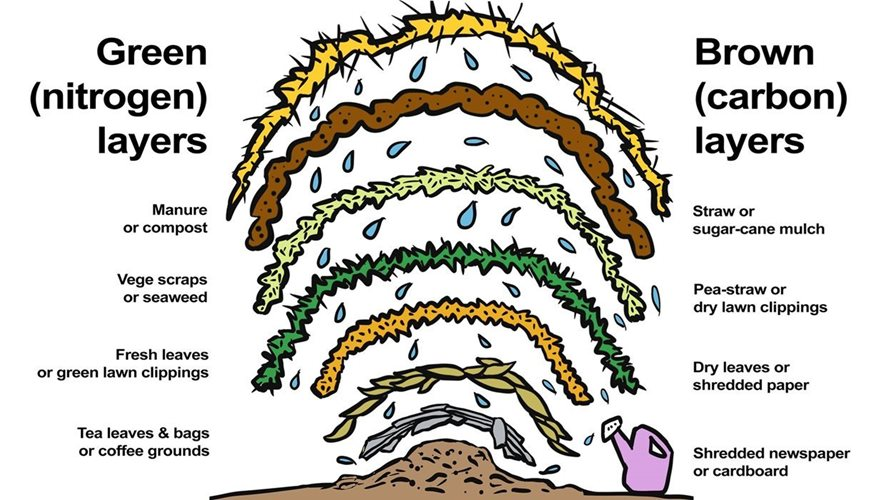 Illustration showing layers of no-dig garden