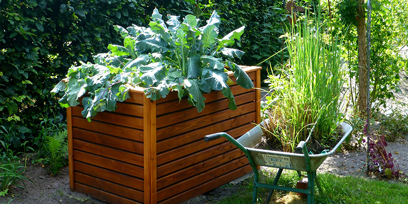raised garden bed, community greeing