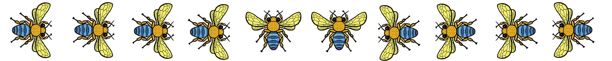 Cartoon strip of Blue Banded bees