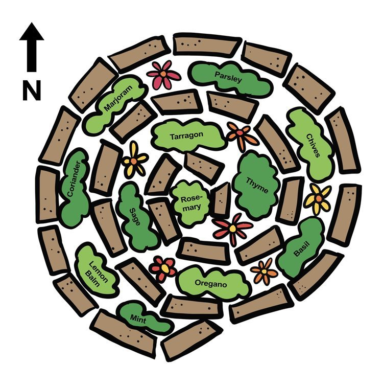 Illustration of a plan for a herb spiral including herb suggestions