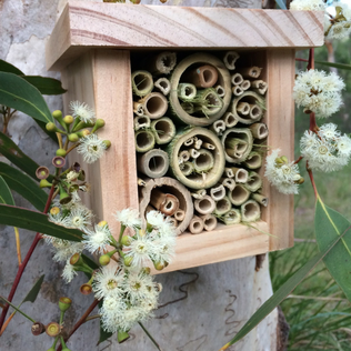 Wood and bamboo bee hotel